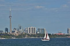 Single sailboat with red rimmed jib sunny Toronto skyline late afternoon Stock Image