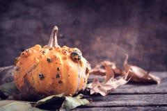 Single scary pumpkin Stock Photo