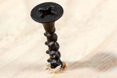 Single screw macro. Stock Photo