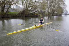Single Scull on Avon River Stock Image