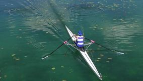 Single scull rowing competitor paddles stock video footage
