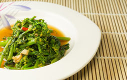Single Serving of Chinese Vegetables on a white Plate. Stir fired Chinese cabbage with oyster sauce Royalty Free Stock Photo
