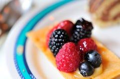 Single serving of fruit tart dessert Stock Image