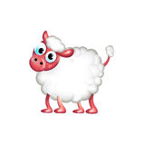 Single sheep isolated on white Royalty Free Stock Photography