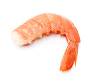 Single shrimps Stock Images