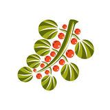 Single simple green vector leaf with orange seeds, stylized natu Royalty Free Stock Photos