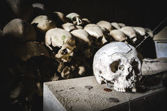 Single  skull in Fontanelle cemetery. Stock Photography