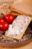 Single slice of crispy bread with curd cheese and radishes. Vertical photo of clay plate with portion of crispy bread with curd herb cheese and slices of Royalty Free Stock Photo