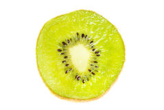 A single slice of kiwi fruit Royalty Free Stock Images
