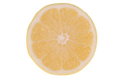 Single slice of lemon Royalty Free Stock Photography