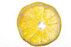 Single slice of ugli (citrus fruit), elevated view, close-up Royalty Free Stock Photos