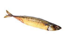 Single smoked mackerel. Isolated on white background stock images