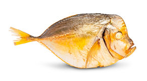 Single Smoked Moonfish Royalty Free Stock Image