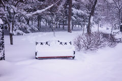 Single snow covered bench in the park Royalty Free Stock Photos