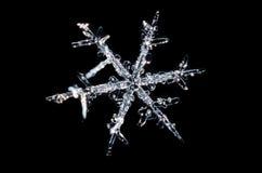 Single Snowflake. On a Black Background Stock Photo
