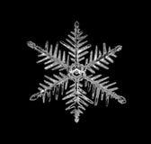 Single Snowflake on Black Background vector illustration
