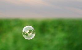 Single soap bubble Stock Photography