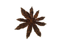 Single Star Anise Stock Photography