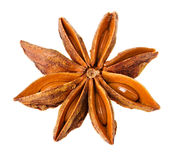 Single star anise Royalty Free Stock Photo