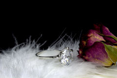 Single stone diamond ring. And rose on white feather Royalty Free Stock Images