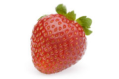 Single Strawberry. A fresh and tasty strawberries reflected on white background Royalty Free Stock Images