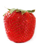 Single strawberry. Royalty Free Stock Images