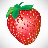 Single strawberry Stock Photography