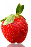 Single Strawberry Royalty Free Stock Photos