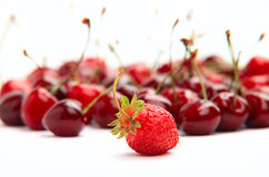 Single strawberry on background of cherries Royalty Free Stock Photo