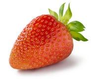 Single strawberry  on white background Stock Image