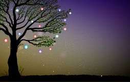 Single summer fairy tree with colored lanterns and sparkles, tree and fireflies in the evening, magic fairy evening,. Vector Royalty Free Stock Image