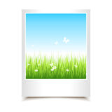 Single summer photo Royalty Free Stock Photography