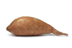 Single Sweet potato Stock Photos