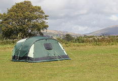 Single tent in a field for camping. Stock Images