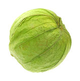 Single Tomatillos Stock Photography