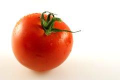 Single Tomato. A close-up of a single tomato with stalk Stock Image