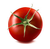 Single tomato isolated on white background Stock Photography