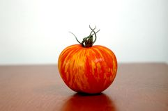 Single Tomato - Photograph. An isolated tomato on wood stock photography