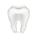 Single tooth isolated on white Royalty Free Stock Photography