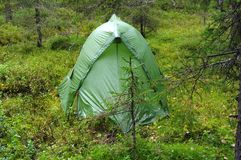 Single tourist tent in the north forest Royalty Free Stock Images