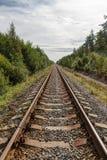 Single-track σιδηρόδρομος στο δάσος Στοκ φωτογραφία με δικαίωμα ελεύθερης χρήσης