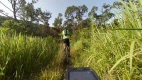 Single track mountain biking stock video footage
