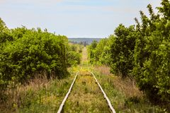 Single-track railroad going into the distance among green trees Royalty Free Stock Images