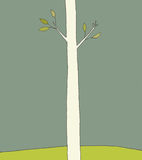 Single Tree. A single tree stands on a hill in the spring time with green leaves on its branches Stock Images