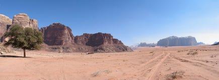 Single Tree And Road Wadi Rum Stock Photo