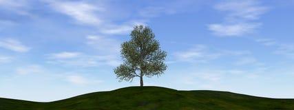 Single tree - 3D render. Single tree by beautiful day - 3D render stock illustration