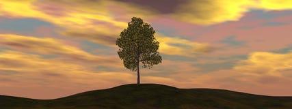 Single tree - 3D render. Single tree by beautiful sunset - 3D render royalty free illustration