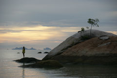 Single tree and girl in the ocean. Single tree and girl on the rocks in the ocean Royalty Free Stock Photography
