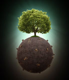 Single tree left on a deforested globe Royalty Free Stock Images