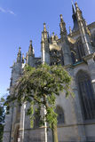 Single tree next to St. Barbaras Church Royalty Free Stock Photos